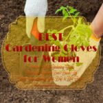 Best Gardening Gloves For Women