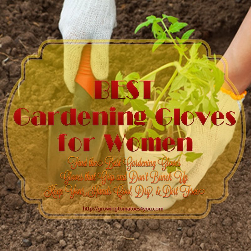 Best Gardening Gloves For Women Growing Tomatoes 4 You