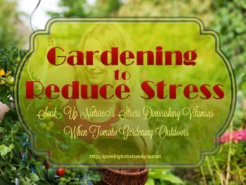 Gardening To Reduce Stress