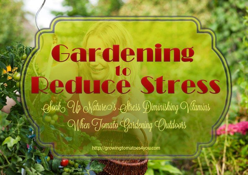 Gardening To Reduce Stress