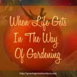 When Life Gets In The Way Of Gardening